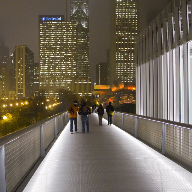 """Sky Bridge, Art Institute, Chicago"" stock image"