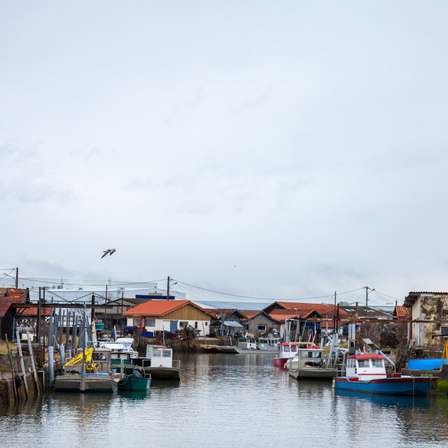 """""""Oyster farmers huts in Gujan Mestras port on the Atlantic ocean during a..."""" stock image"""