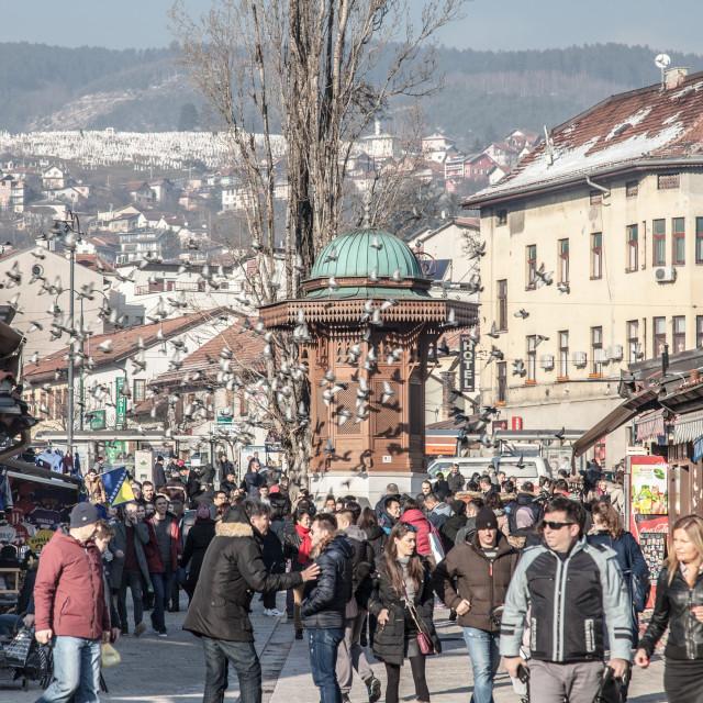 """SARAJEVO, BOSNIA AND HERZEGOVINA - FEBRUARY 16, 2018: Pigeons flying over the..."" stock image"