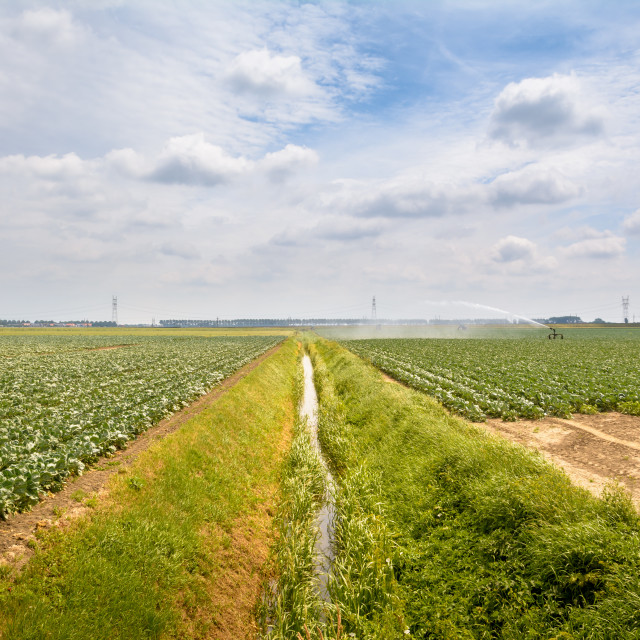 """Farmland with Ditch"" stock image"