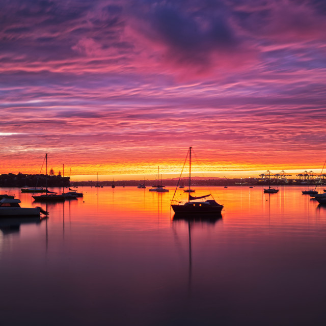 """Sunrise over Auckland city"" stock image"