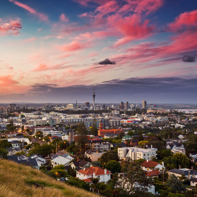 """Auckland city from Mount Hobson"" stock image"