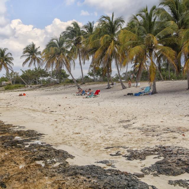"""""""On a caribbean beach"""" stock image"""