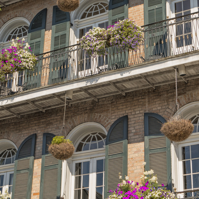"""Plants on balconies in New Orleans, USA"" stock image"