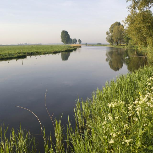 """Bakkerskil creek near Nieuwendijk"" stock image"