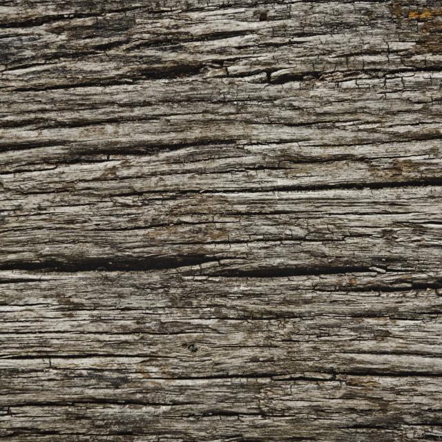 """Rough Dark Wood Texture"" stock image"