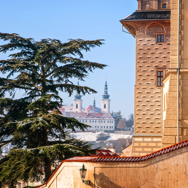 """""""National Gallery Salm Palace and Cypress Tree. Prague"""" stock image"""