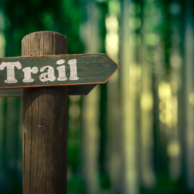 """""""Forest Trail Sign"""" stock image"""