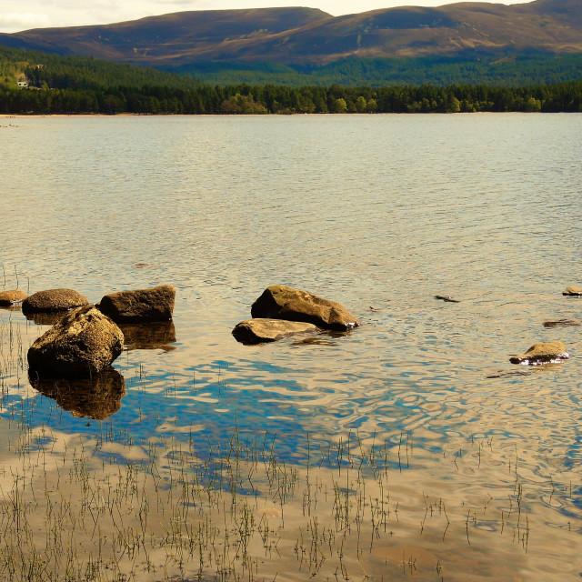 """""""Loch Morlich."""" stock image"""