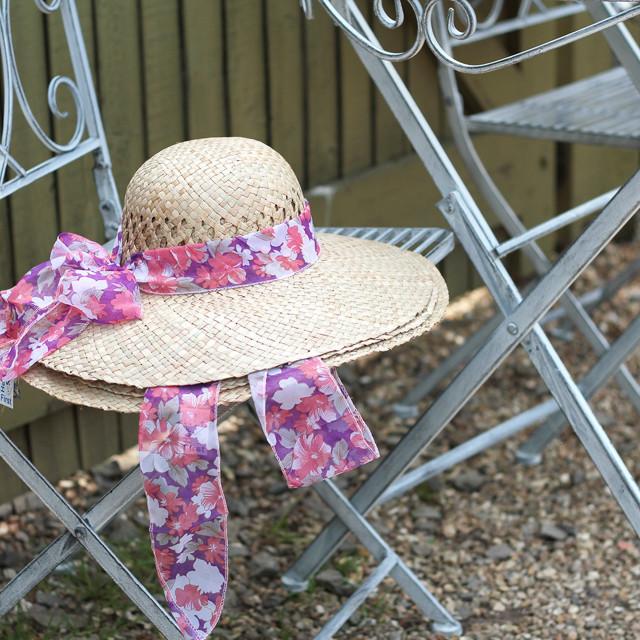 """Straw Hat on Seat"" stock image"
