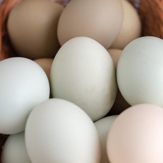 """Dark green, light grey, white egs in woven basket macro"" stock image"
