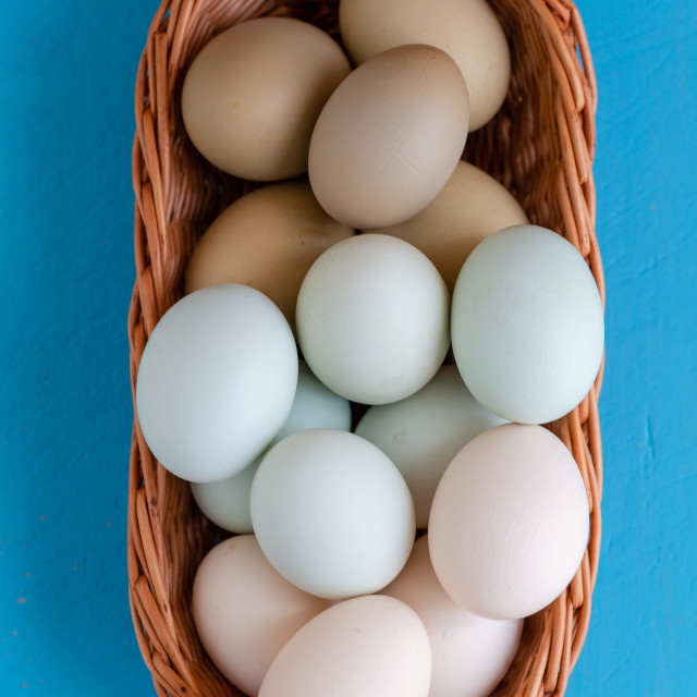 """""""Colourful eggs in gradient natural tones still image"""" stock image"""