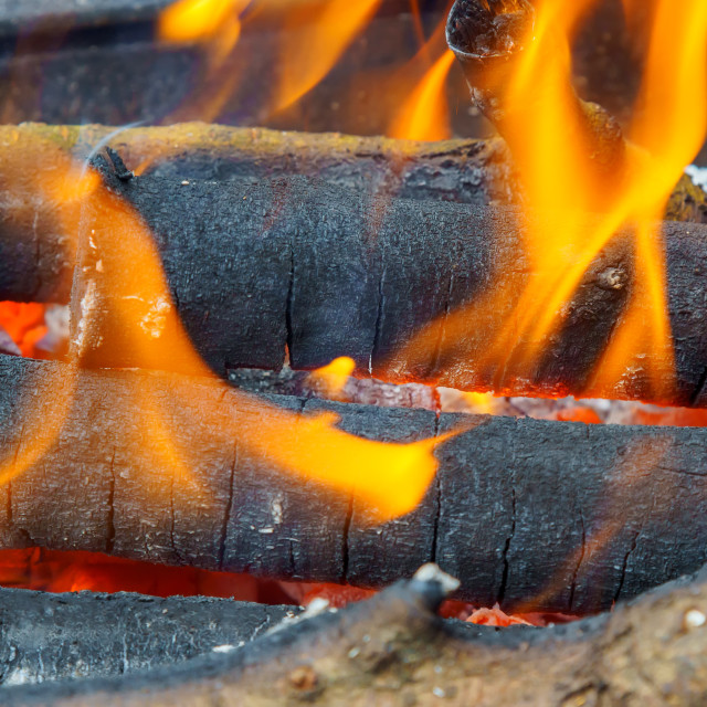 """""""Bonfire with flame, smoke, wooden charcoals embers."""" stock image"""