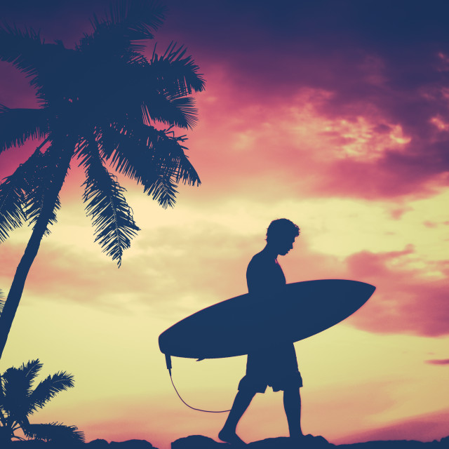 """""""Retro Palm Tree And Surfer"""" stock image"""