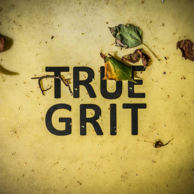"""True Grit Sign"" stock image"