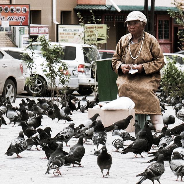"""""""Pigeon Lady - Ulaanbator, Mongolia 1"""" stock image"""