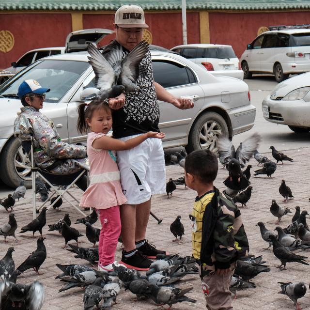 """Feeding pigieons - Ulaanbator, Mongolia"" stock image"