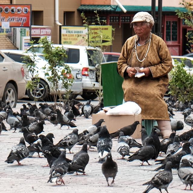 """""""Pigeon Lady - Ulaanbator, Mongolia 2"""" stock image"""