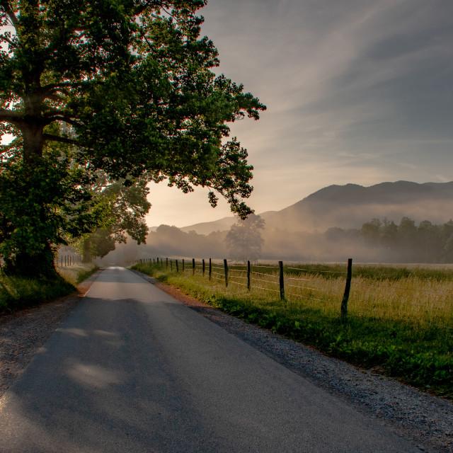 """""""Backlight Rural Sunrise"""" stock image"""