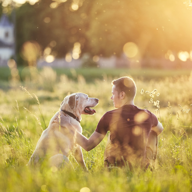 """Man with his dog at sunset"" stock image"