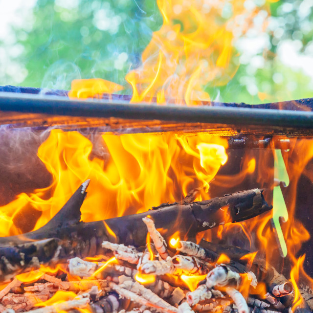 """camp fire in pit at campsite"" stock image"