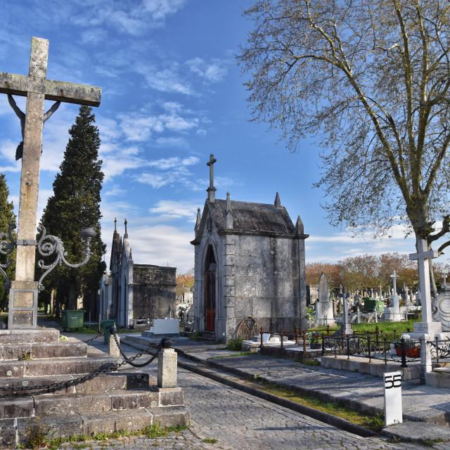 """""""Oporto Cemetery"""" stock image"""