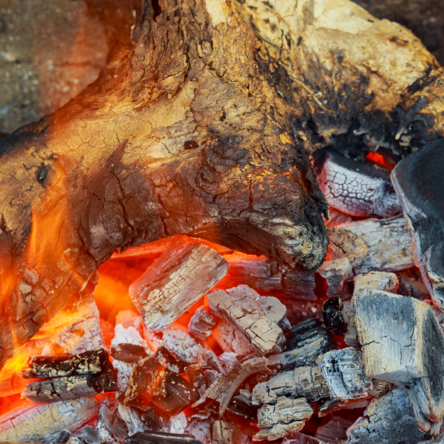 """""""Burning firewood in the fireplace closeup, glowing logs, fire and flames"""" stock image"""