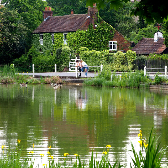 """Shenfield Common Pond, Brentwood, Essex,UK"" stock image"