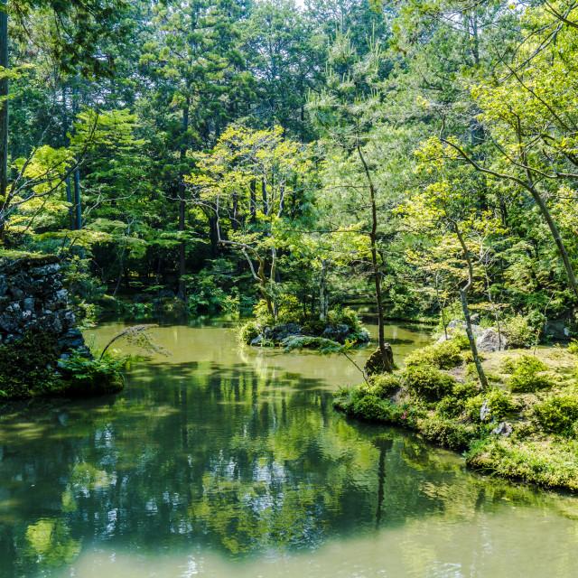 """Moss Temple Lake"" stock image"