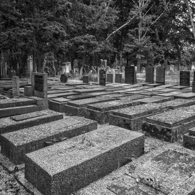 """""""Holocaust victims graves"""" stock image"""