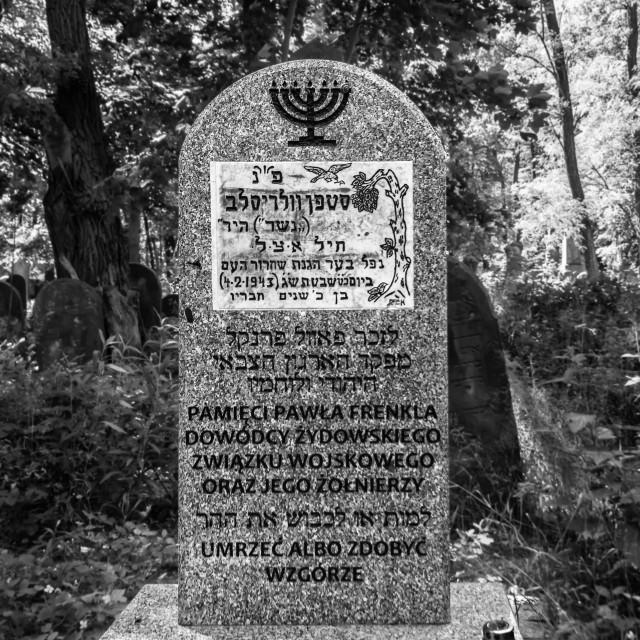 """Ghetto heroes memorial"" stock image"