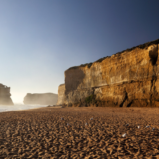"""""""Beach at Gibson Steps"""" stock image"""
