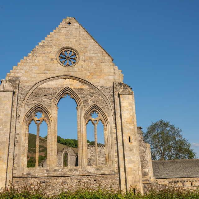 """""""Ruined wall and window of Valle Crucis abbey near Llangollen"""" stock image"""