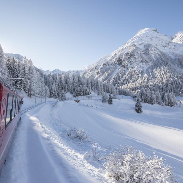 """""""Bernina Express train, Preda Bergun, Albula Valley, Canton of Graubünden,..."""" stock image"""