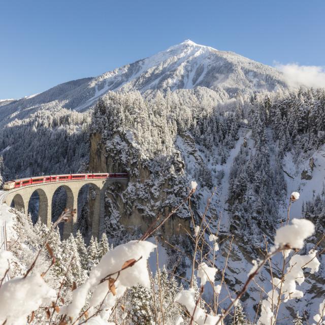 """Bernina Express train on Landwasser Viadukt, Filisur, Albula Valley, Canton..."" stock image"