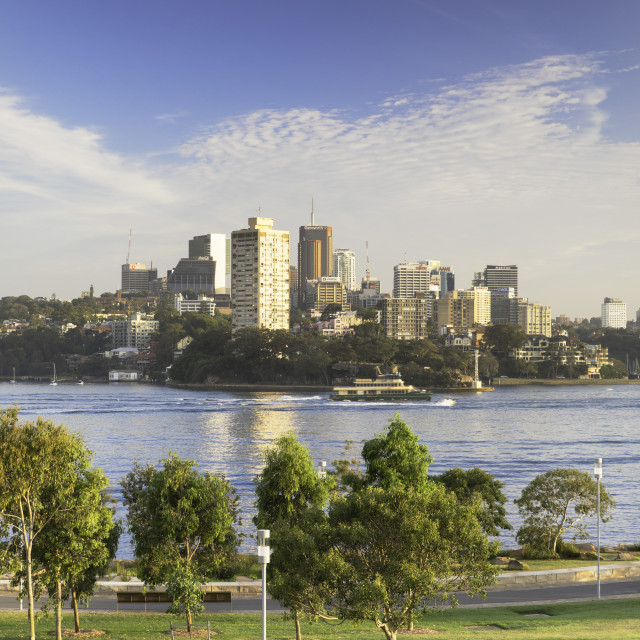 """""""View across Sydney Harbour from Barangaroo Reserve, Sydney, New South Wales,..."""" stock image"""