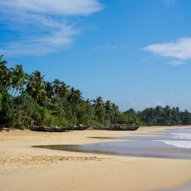 """""""Talalla Beach on the south coast of Sri Lanka, Asia"""" stock image"""