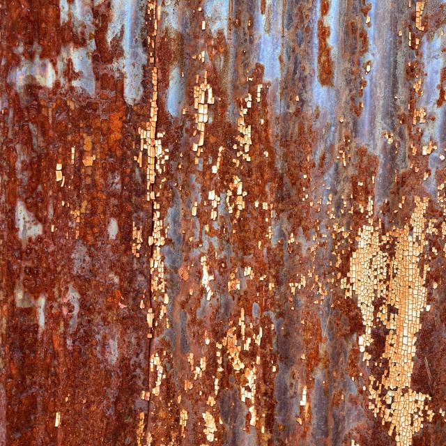 """Old rusty metal sheet"" stock image"
