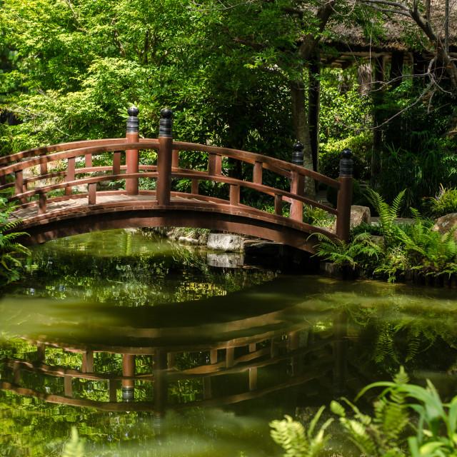"""Bridge over a pond"" stock image"