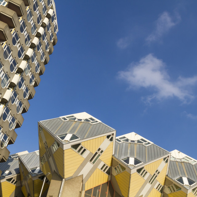 """Looking up in Rotterdam"" stock image"