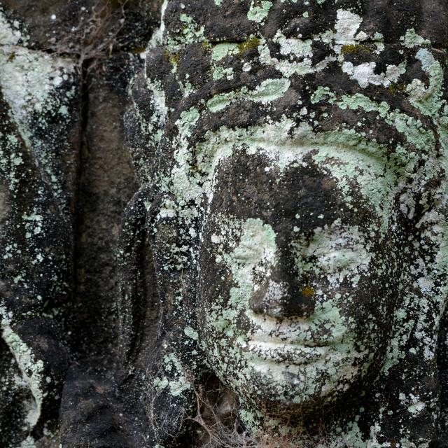 """CAMBODIA SIEM REAP ANGKOR TERRACE OF ELEPHANTS"" stock image"