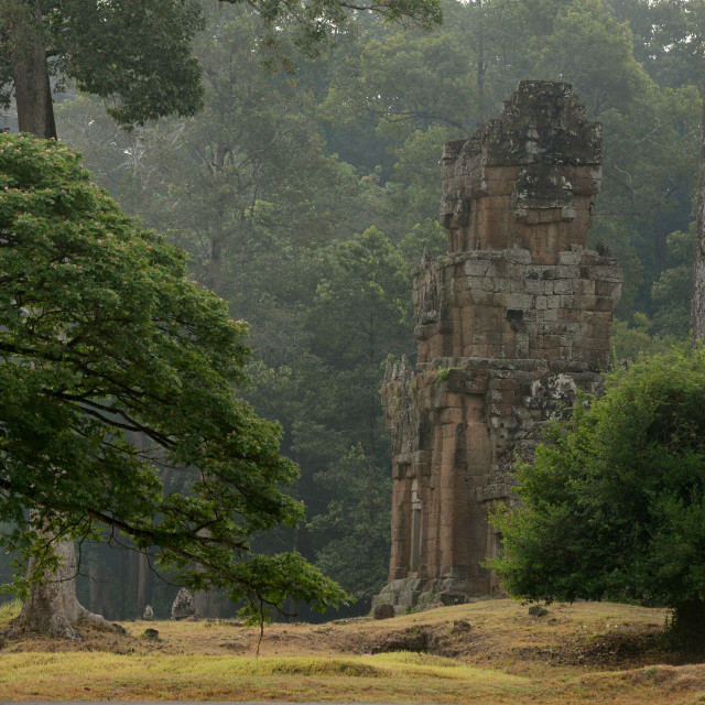 """""""CAMBODIA SIEM REAP ANGKOR TEMPLE TOWERS"""" stock image"""