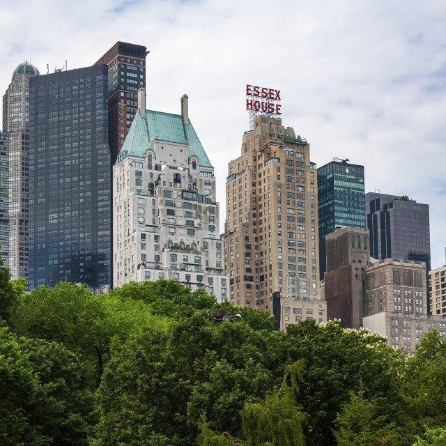 """New York City, USA - June 6, 2010: View of the New York skyline from the Central Park, in the city of New York, USA."" stock image"