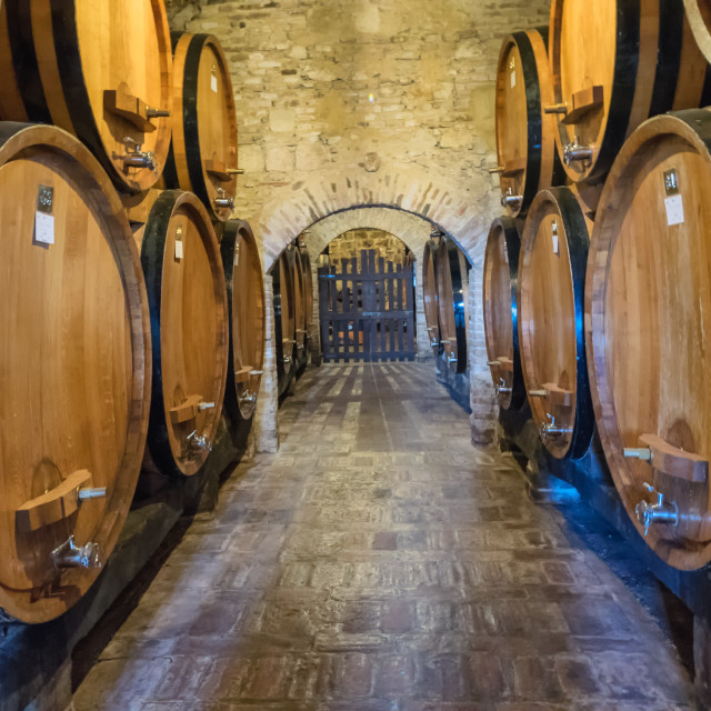 """Barrels for winemaking in Tuscany"" stock image"