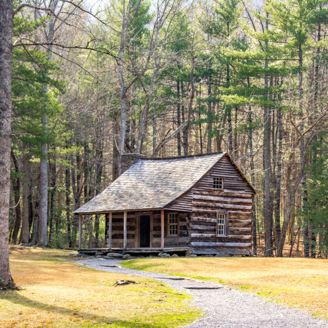 """Carter-Shields Cabin"" stock image"