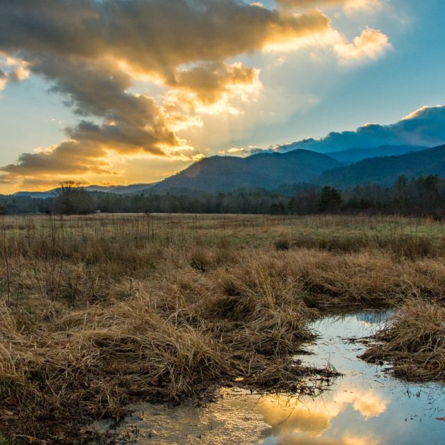 """Winter Dawn in Cades Cove"" stock image"