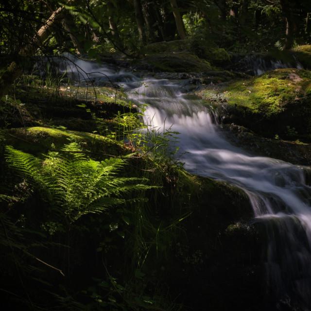"""Lynn Mill Waterfalls"" stock image"