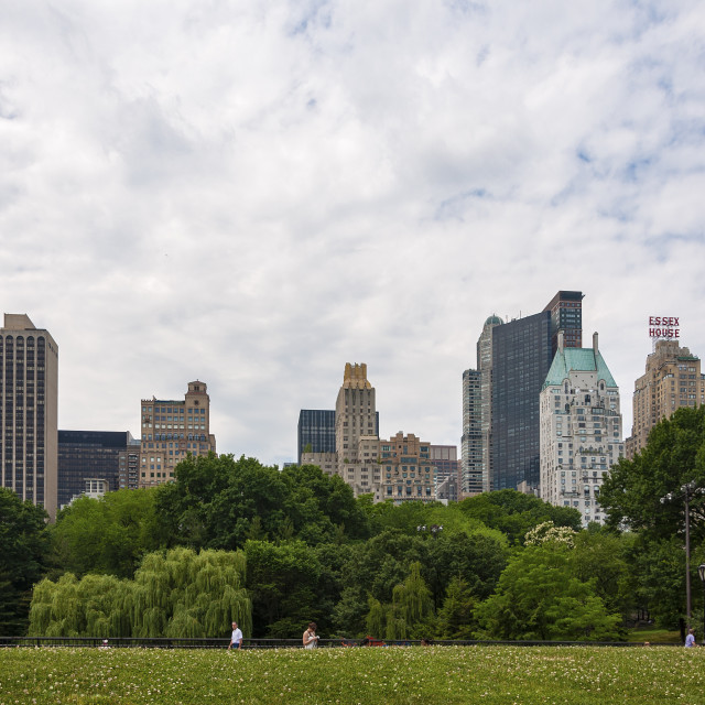 """New York City, USA - June 6, 2010: People walking in the Central Park with the New York skyline in the background, in the city of New York, USA."" stock image"