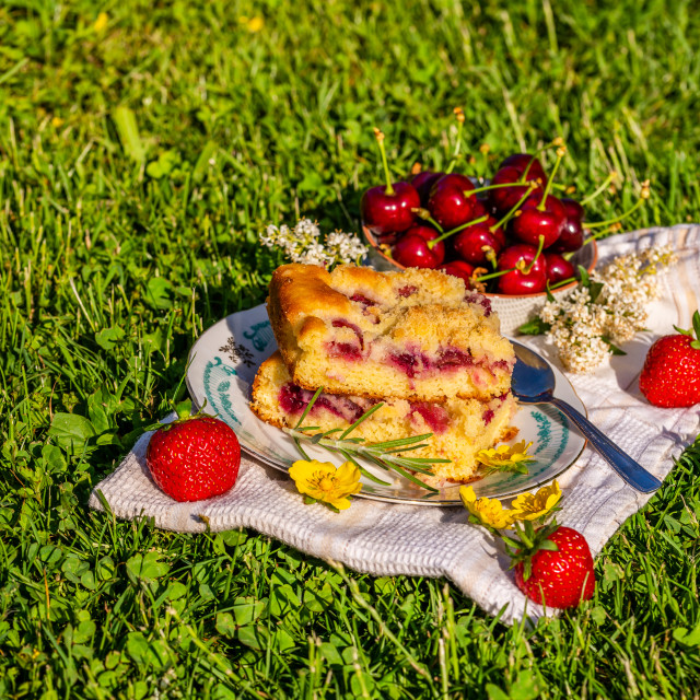 """Portion of cherry cake on a towel with strawberries on grass"" stock image"