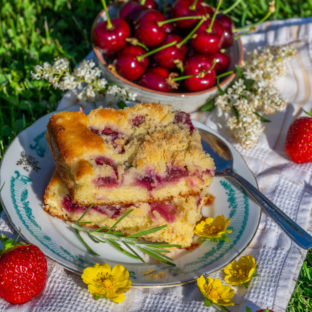 """Portion of cherry cake with ripe strawberries around and other cherries in bowl"" stock image"